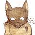 竹光さんの画像