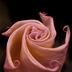 花乃助さんの画像