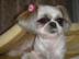 chichiの母さんの画像