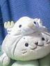 hirotanさんの画像