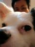 ONOchanさんの画像