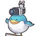 鳥さんの画像
