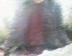 camon-hutabaさんの画像