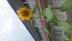 M-sasakiさんの画像