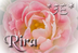 riraさんの画像