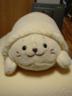 yulsegaさんの画像