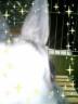 うさぺんさんの画像