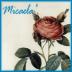 ミカエラさんの画像